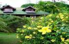 ขายที่ดินสไตล์รีสอร์ท วิวสวยบรรยากาศดี บ้านพักเป็นบ้านไม้สักสไตล์ล้านนา