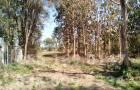 ขายที่ดินติดถนนทางหลวง พะเยา-ป่าแดด หน้า อ.ภูกามยาว 15-1-43 ไร่