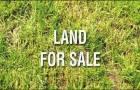 ขายที่ดิน 315 ตรวในหมู่บ้านผกามาศ สุขุมวิท  71