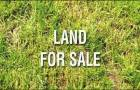 ขายที่ดิน 700 ตรวบนถนนเจริญนครเหมาะทําโรงเเรม คอนโด