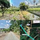 ขายสวน ติดคลองส่งน้ำ 1 ไร่ 1 งาน ต.ท่าช้าง อ.เมือง จ.นครนายก ติดถนน ใกล้เมือง