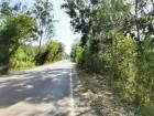 ขายที่เนินสวนไม้สักอายุ 16ปี หน้ากว้างติดถนนดำ 300เมตรเนื้อที่ 15ไร่ ขายไร่ละ 2.5แสน ต.ท่าอิบุญ อ.หล่มสัก โทร0857301462