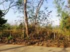 ขายที่ดินเปล่าติดถนนคอนกรีต1-3-25ไร่ ใกล้อบต.เจดีย์หลวง300เมตร อ.แม่สรวย ขาย9แสนโทร0813573848