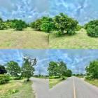 ขายสวนมะยงชิด ติดถนนลาดยางสองเลน เนื้อที่ 2 งาน ต.พรหมณี อ.เมือง จ.นครนายก มองเห็นวิวเขาชะโงก