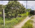 ขายที่ดินบ้านหารแก้ว อำเภอหางดง จังหวัดเชียงใหม่เนื้อที่ 2 งาน 86 ตารางวา เข้าทางคันคลองชลประทาน ม.นอร์ท-เชียงใหม่ ประมาณ  2 กิโลเมตร